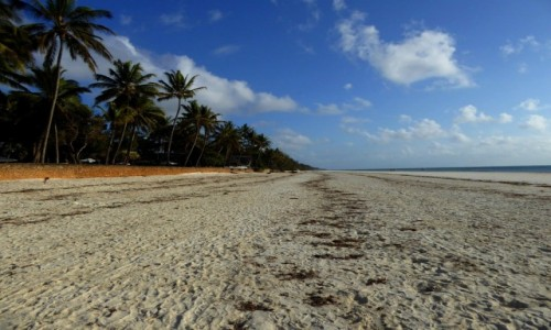Zdjęcie KENIA / Kenia nadbrzeżna / Diani Beach / Taka piękna, a taka pusta