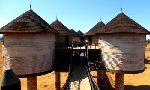 Zdjęcie KENIA / Kenia Wschodnia / Tsavo East / Hotel na kurzej nóżce