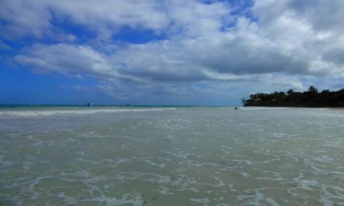 Zdjecie KENIA / Kenia Nadbrzeżna / Diani Beach / Diani Beach