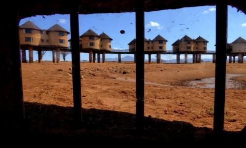 Zdjęcie KENIA / Kenia Wschodnia / Tsavo East / Na kurzej nóżce