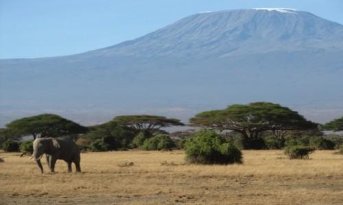 Zdjecie KENIA / -Kenia / Kenia / kenia