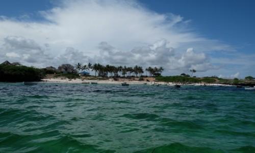 Zdjecie KENIA /  miasto Milindi ,region Kilifi / wybrzeże Oceanu Indyjskiego / plaże Malindi cd