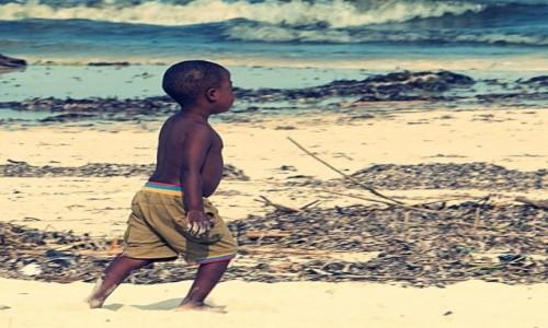 Zdjecie KENIA / miasto Malindi, region Kilifi / wybrzeże Oceanu Indyjskiego / plaże Malindi cd