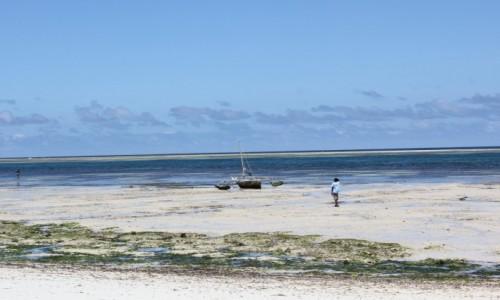 Zdjecie KENIA / Mombasa / Hotel Voyager Beach Resort / Trochę Kenii