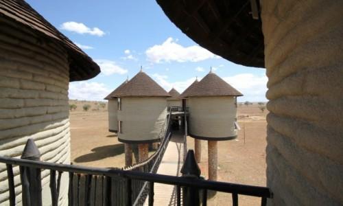 Zdjecie KENIA / Taita Hills / Sarova Salt Lick / Hotel niczym pasieka....