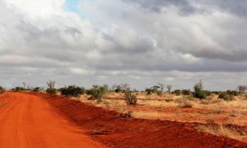 KENIA / Tsavo East / Tsavo West / Czerwona jak cegła....