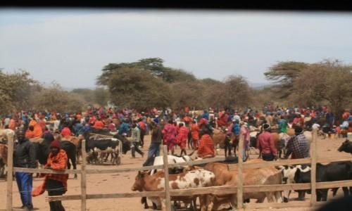 Zdjecie KENIA / Masai Mara / Masai Mara / Targ w masajskiej wiosce