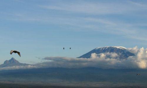 Zdjecie KENIA / południowa Kenia na granicy z Tanzania  / Amboseli / Kilimandżaro