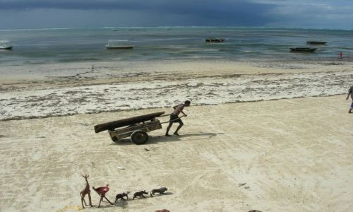 Zdjecie KENIA / Mombasa / Mombasa / Kenia