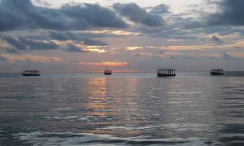 Zdjecie KENIA / wsch.część Kenii / Ocean Ind. - Mombasa / Mombasa