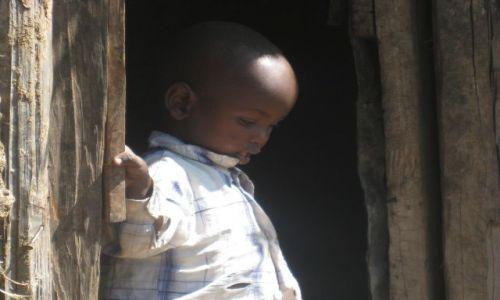 Zdjecie KENIA / brak / masai mara / maluszek