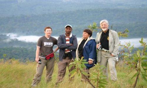Zdjecie KENIA / Kakamega / Kakamega - las deszczowy / Las deszczowy w tle