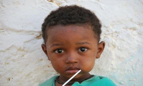 Zdjecie KENIA / Wschodnie Wybrzeże / Wasini / Trochę słodyczy