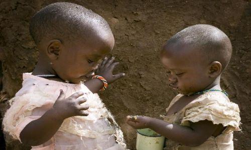 Zdjęcie KENIA / brak / Amboseli / Posiłek