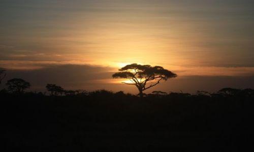 KENIA / Ocean Indyjski / Mombasa / zachód nad Amboseli