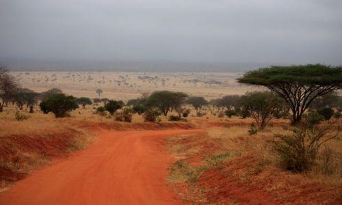 Zdjęcie KENIA / Mombasa / Park Narodowy Amboseli / w drodze do Amboseli
