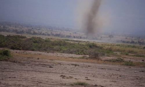 Zdjęcie KENIA / Park Narodowy Amboseli / Amboseli /
