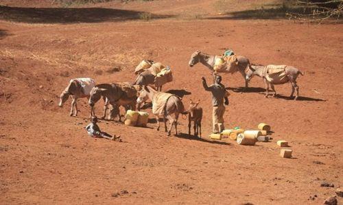 Zdjęcie KENIA / Park Narodowy Tsavo West / Tsavo West / afrykańskie pozdrowienia....