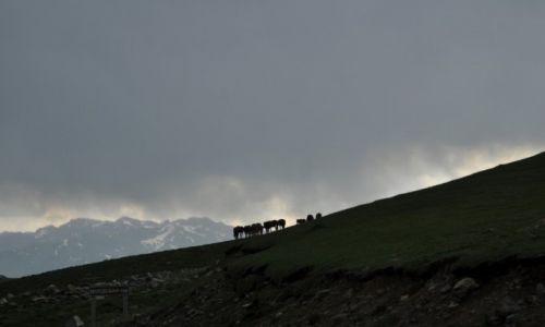 Zdjecie KIRGIZJA / Tien Shan / Tien Shan / W drodze z Osh do Bishkek