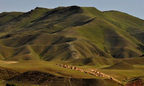 KIRGIZJA / Tien Shan / Tien Shan / W drodze z Osh do Bishkek
