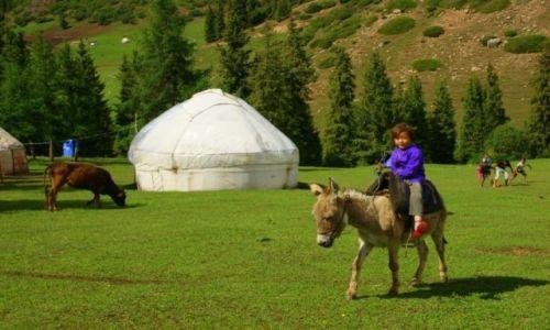 Zdjęcie KIRGIZJA / Kirgizja / Kirgizja / Jazda