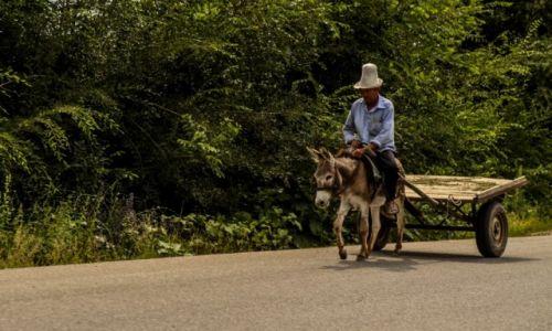 Zdjęcie KIRGIZJA / Kirgistan / płn. kraju / Kirgiski Sancho Pansa :)