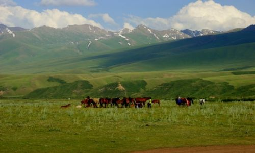 Zdjęcie KIRGIZJA / -Kirgistan / Kirgistan / Kirgistan