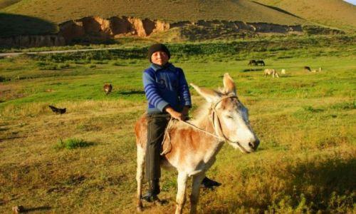Zdjęcie KIRGIZJA / Okolice Narynia  / Okolice Narynia  / Jedzie