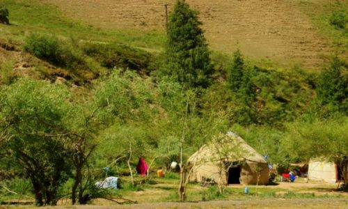 Zdjęcie KIRGIZJA / Dalan Pass / Dalan Pass / Jurta