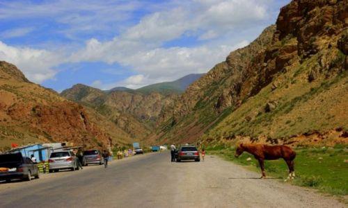 Zdjęcie KIRGIZJA / Dalon Pass / Dalon Pass / Droga
