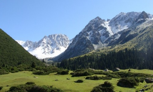 Zdjecie KIRGIZJA / - / Dolina Teleti / Dolina Teleti - widok w dolinę południową