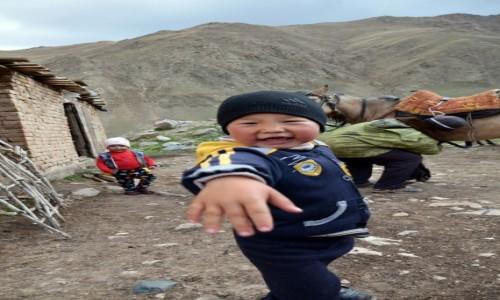 Zdjęcie KIRGIZJA / Naryn / Kol-Ukok / Zaprzęganie konia