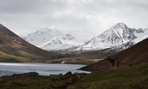 Zdjęcie KIRGIZJA / Naryn / Kol-Ukok / Kol-Ukok