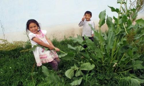 Zdjęcie KIRGIZJA / Tien-Shan / Gdzieś powyżej Kyzyl Tuu / Rzepka?