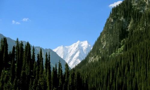 KIRGIZJA / Tien-Shan / Gdzieś powyżej Kyzyl Tuu / Kar ubaktysy