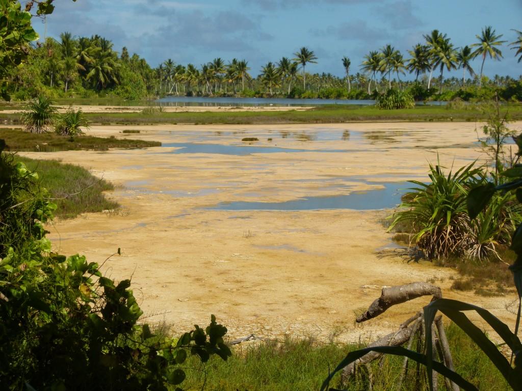 Zdjęcia: Bonriki, Tarawa, ...jest błoto jak w SPA..., KIRIBATI