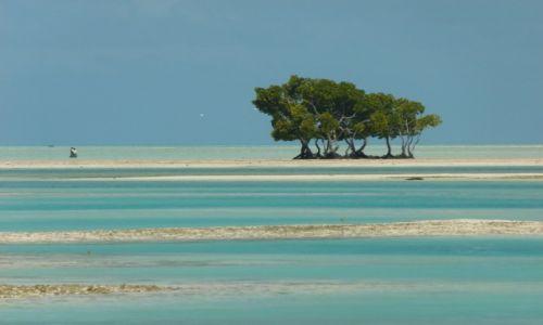 Zdjecie KIRIBATI / Tarawa / Bonriki / ...można spacerowac po lagunie...