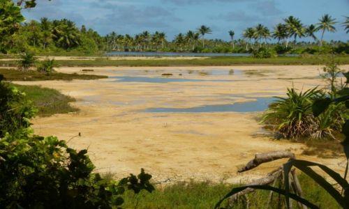 Zdjęcie KIRIBATI / Tarawa / Bonriki / ...jest błoto jak w SPA...