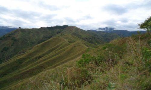 Zdjęcie KOLUMBIA / Cauca / Tierradentro / Aguacate