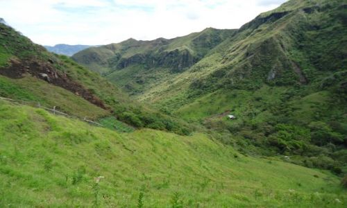Zdjęcie KOLUMBIA / Cauca / Tierradentro / Zielone łąki