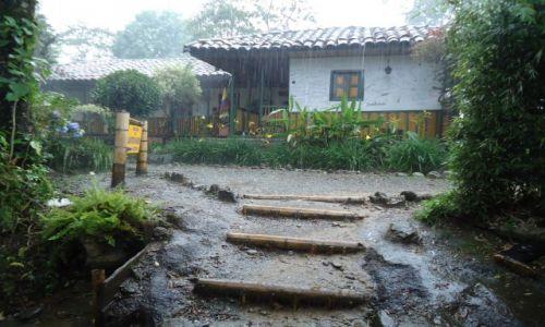 Zdjecie KOLUMBIA / Quindio / Salento / Deszcz