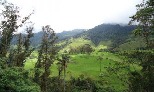 KOLUMBIA / Quindio / Cocora / Panorama doliny Cocory