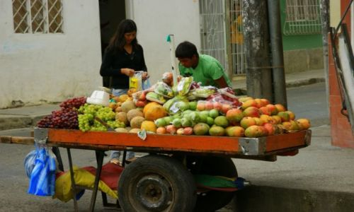 KOLUMBIA / Papayan / Papayan / Sprzedawca