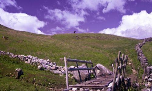 Zdjecie KOLUMBIA / del Cocuy / del cocuy / górskie pastwis