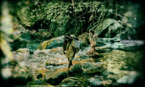 Zdjecie KOLUMBIA / Taunggyi / Teyuna / duchy dżungli