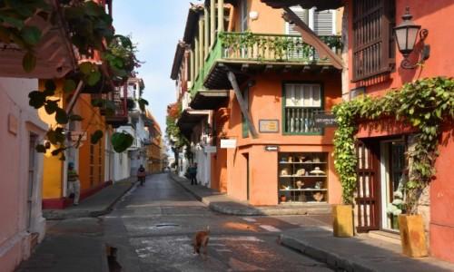 Zdjęcie KOLUMBIA / wybrzeże / Cartagena de Indias / Stare miasto w Cartagenie de Indias