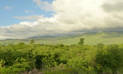 Zdjecie KOMORY / Ngazidja / Hahaia / Zielone wzgórza