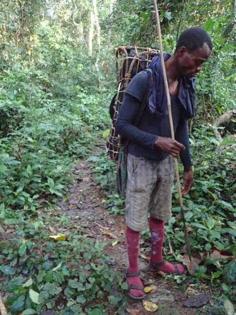 Zdjęcia: Gdzieś w dżungli, Przewodnik, KONGO