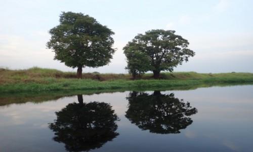 Zdjecie KONGO / - / Matoko / Likouala Aux Herbes River