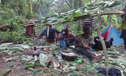 Zdjecie KONGO / - / Gdzieś w dżungli / Obóz